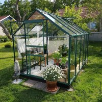 Växthus Neptunus - Grönt 6,2 m² härdat glas